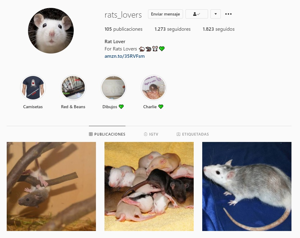 Primer paso para eliminar seguidores de Instagram con el bloqueo