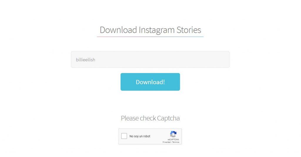 Primer paso para utilizar StorySaver.net