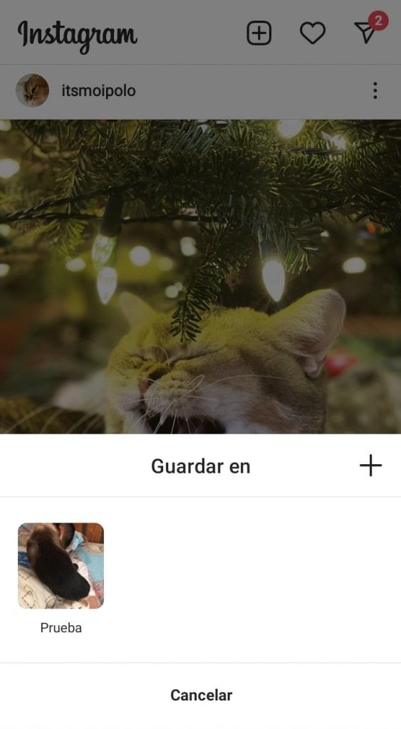 Guardar fotos de instagram en colección